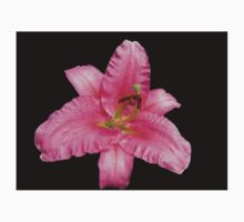 Beautiful Pink Lily on Black Background Kids Tee
