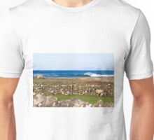 Stone walls and the barrels are clean Unisex T-Shirt