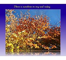 There is sunshine in my soul today Photographic Print