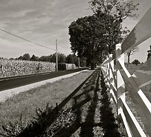 century farm by Mark de Jong