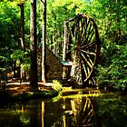 Berry's Mill by Mattie Bryant
