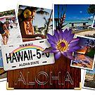 Aloha spirit by Ken Wright