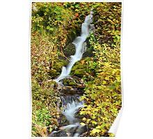 Waterfall Alpine Loop Poster