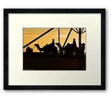 Camels @ Glenelg Framed Print