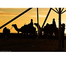 Camels @ Glenelg Photographic Print
