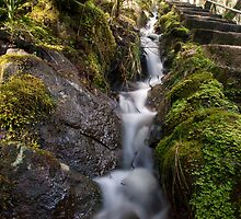 Mini River at Dip Falls by Kylie  Sheahen