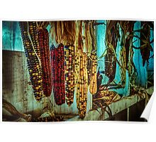 Corn Hanging in the Barn Poster
