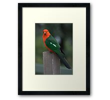 Is there any food for me? Framed Print