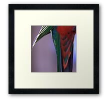 Shake your tail feathers! Framed Print