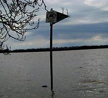 No Camping at Deep Lake by SuziTC