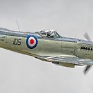 Supermarine Seafire MK.XVII (2) by SWEEPER