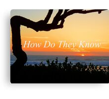 How Do They Know Canvas Print