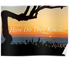 How Do They Know Poster