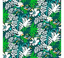 Floral pattern with tropical leaves and flowers in green Photographic Print