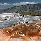 Mammoth Hot Springs by Daniel Owens