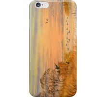 Duck Hunting Calls iPhone Case/Skin