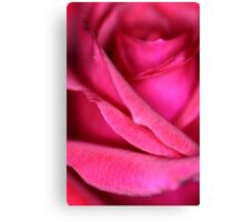 Pink Satin Rose Canvas Print