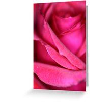 Pink Satin Rose Greeting Card
