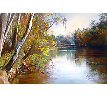 Wattle Time - Goulburn River Photographic Print