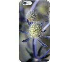 Sea Holly iPhone Case/Skin