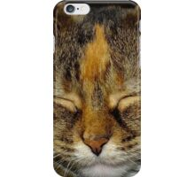 Cat Nap iPhone Case/Skin