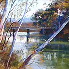 'A Glimpse of Goulburn Bridge' by Lynda Robinson