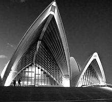 sydney opera house ii by doug riley