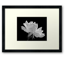 9-11 Rememberance Bloom Framed Print
