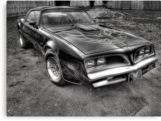 Black and White Trans Am  by Thomas Young