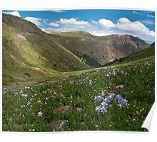 American Basin, San Juan mountains, Colorado Poster