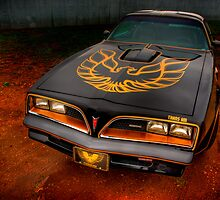 Trans Am 3 by Thomas Young