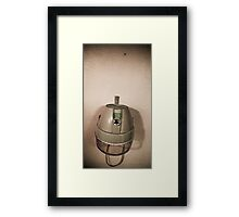 Home is where the hair is Framed Print