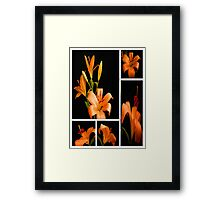 Lily.Collage. Framed Print