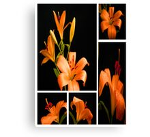 Lily.Collage. Canvas Print