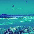Bird flying Orb by LESLEY BUtler
