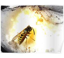 German Wasp, Big Apple Poster