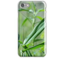 color my world green iPhone Case/Skin
