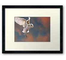 Evening Hunting Framed Print