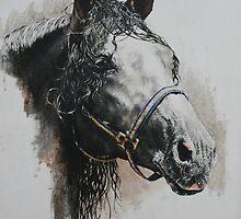 Domeq's Stallion by David McEwen