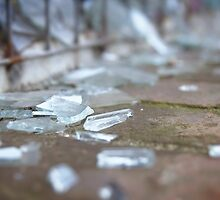 Broken Glass by Melissa Dickson