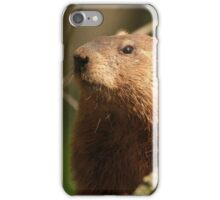 Close Encounter with a Groundhog iPhone Case/Skin