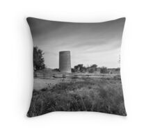 The Time Traveller Throw Pillow