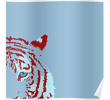 A Fluffy Tiger Poster