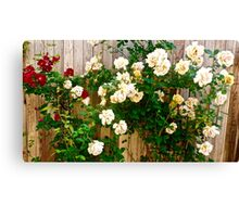 Flower Print Canvas Print