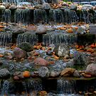 The Cascades by Larry Trupp
