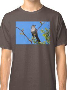Gray Catbird Classic T-Shirt