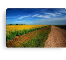 Canola Country Canvas Print