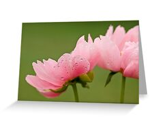 Flowers for me Greeting Card