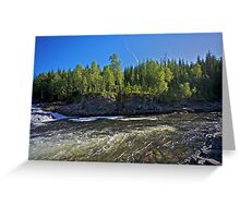 Tight lines  -  You are here my big salmon !!! Brown Sugar Story. Greeting Card