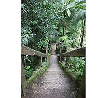 The Grand 47-Step Staircase Photographic Print